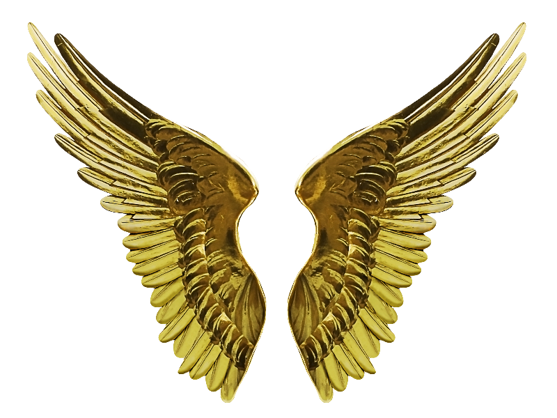 Angel Gold Wings PNG Cutout Image