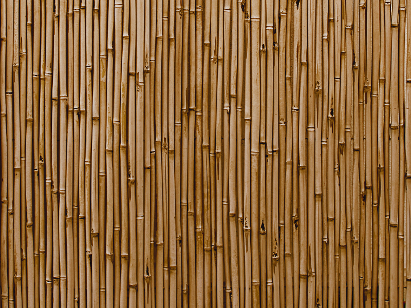 Bamboo Wall Texture High Res