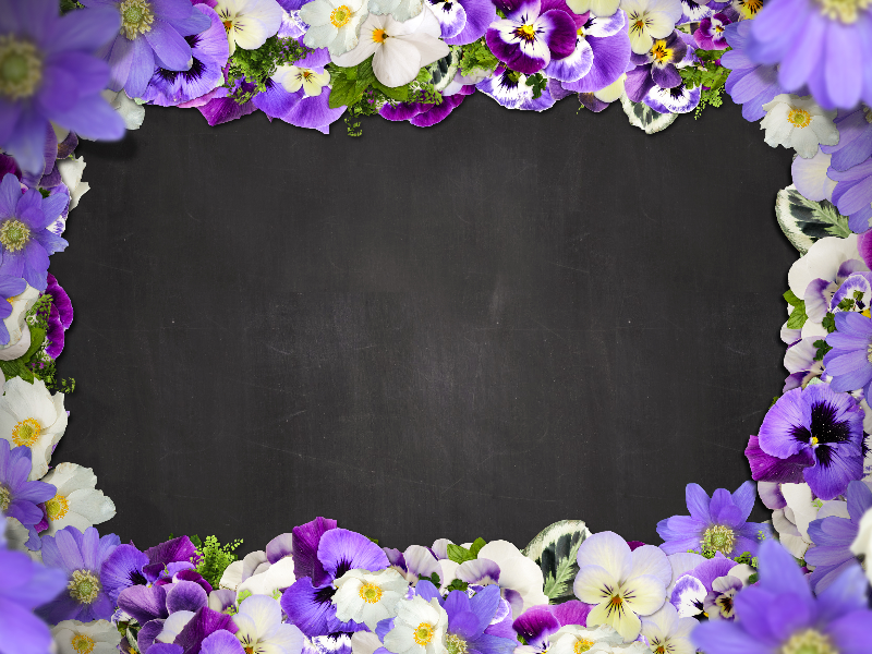 Beautiful Floral Border With Purple Flowers Free Background