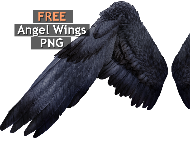 Black Angel Wings PNG Free Image