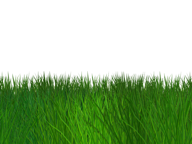 Border Grass Seamless Transparent Background Free (Nature ...