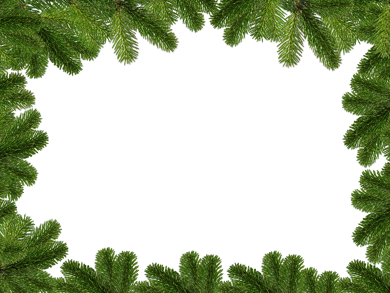 Christmas Backgrounds Png.Christmas Background With Fir Branches Free Download Nature