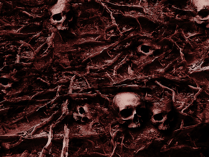 Creepy Skull Background Horror Texture