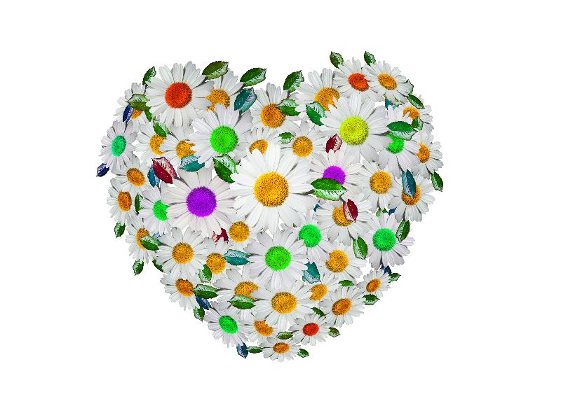 Cute Floral Heart PNG Image
