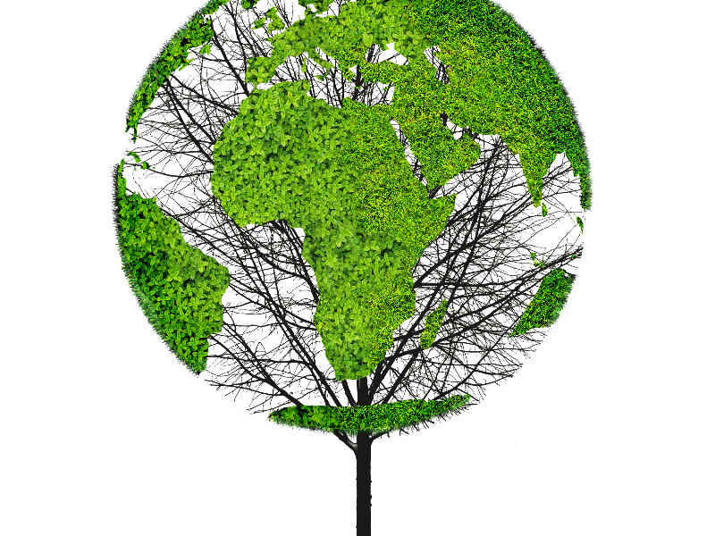 Earth World Map Green Tree PNG Object for Photoshop (Isolated