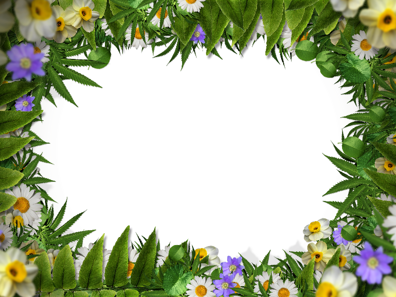 Flower Frame Border PNG With Green Leaves Background