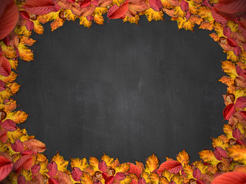 Free Autumn Leaf Frame with Chalkboard Background