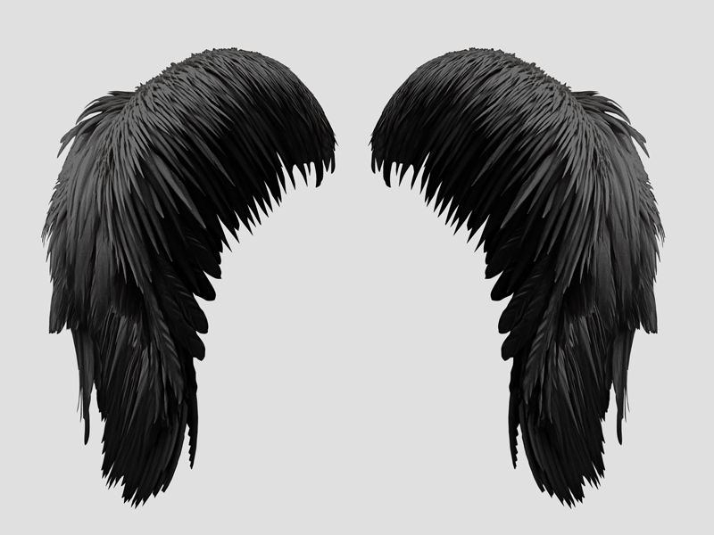Free Black Wings PNG