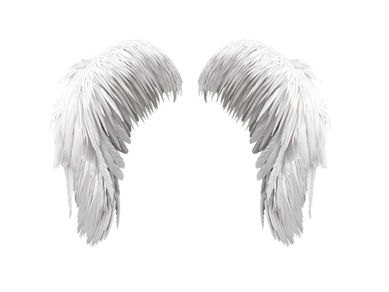 Free White Wings PNG