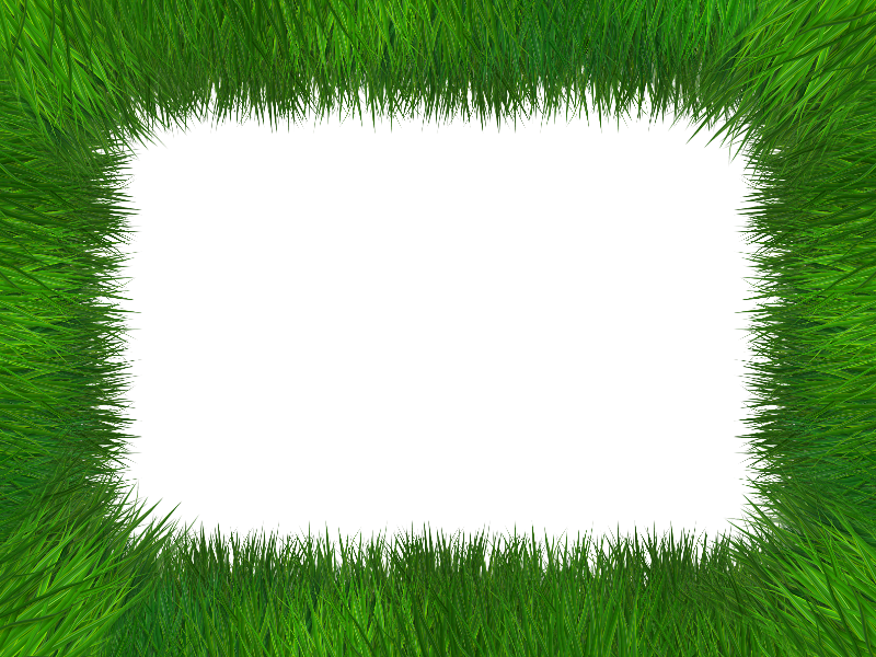 Grass Frame Isolated With Transparent Background Free