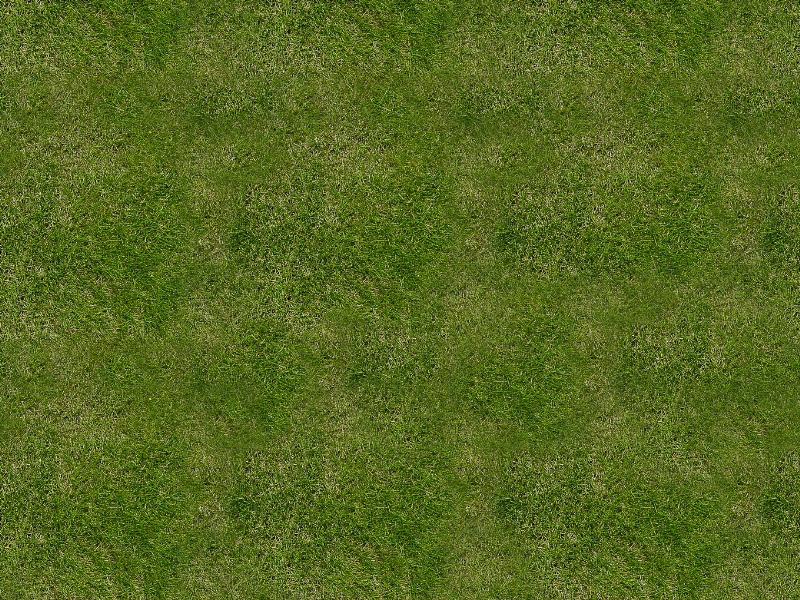 Grass Texture Seamless for Free