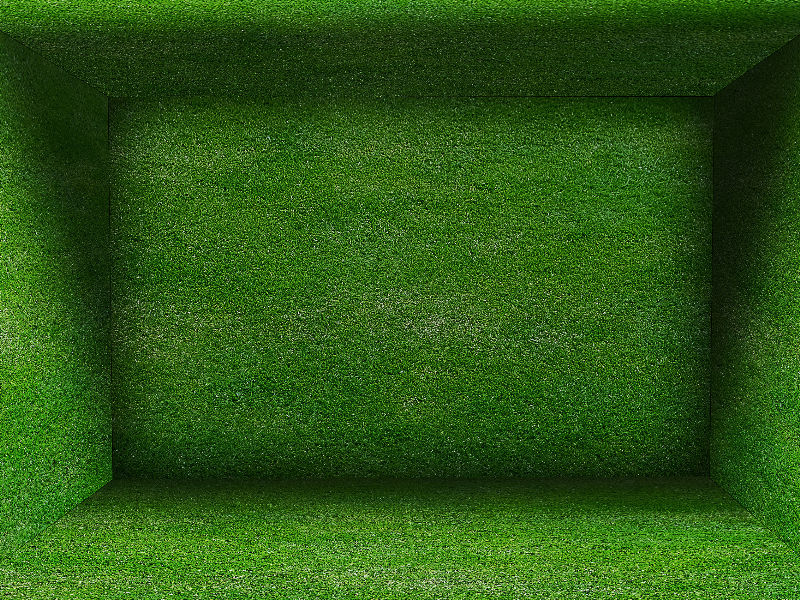 Grass Room Background Free