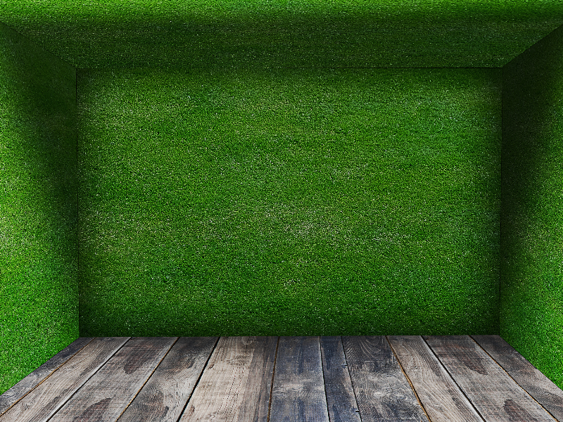 Grass Room With Wooden Floor Background Free