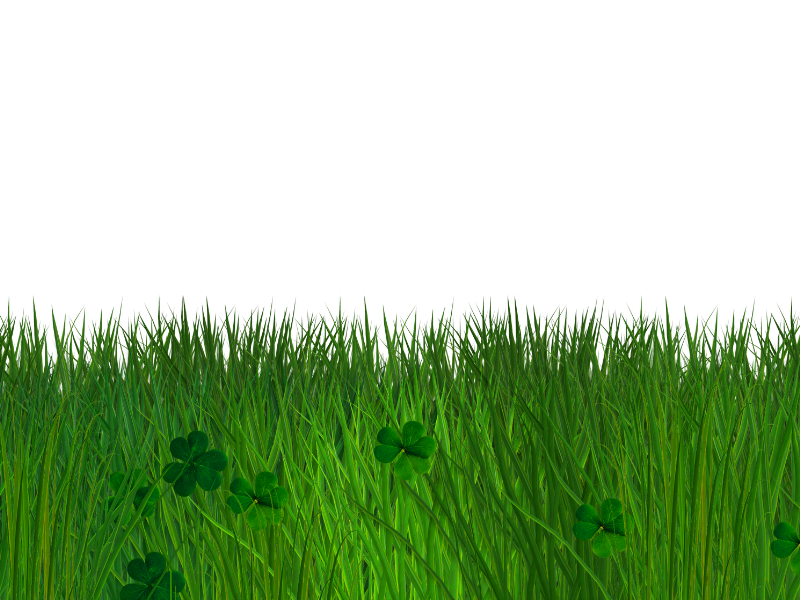 Green Grass and Clover Border with Transparent Background PNG