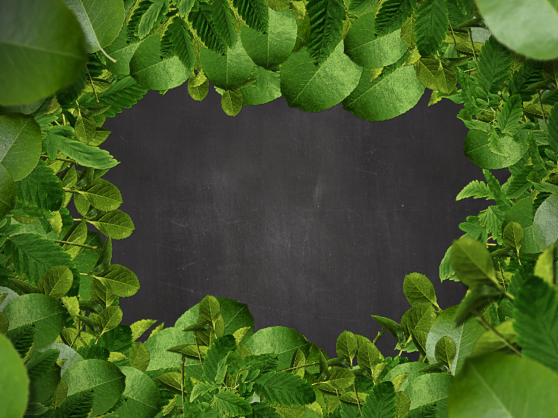 Green Leaf Border Background Free