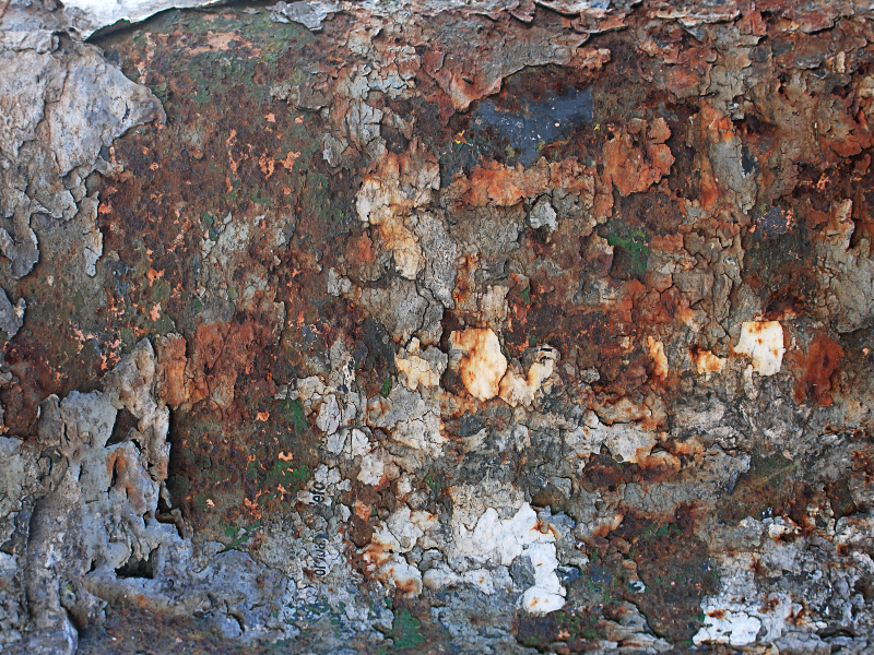 Grunge Rusty Peeling Paint Texture Grunge And Rust Textures for