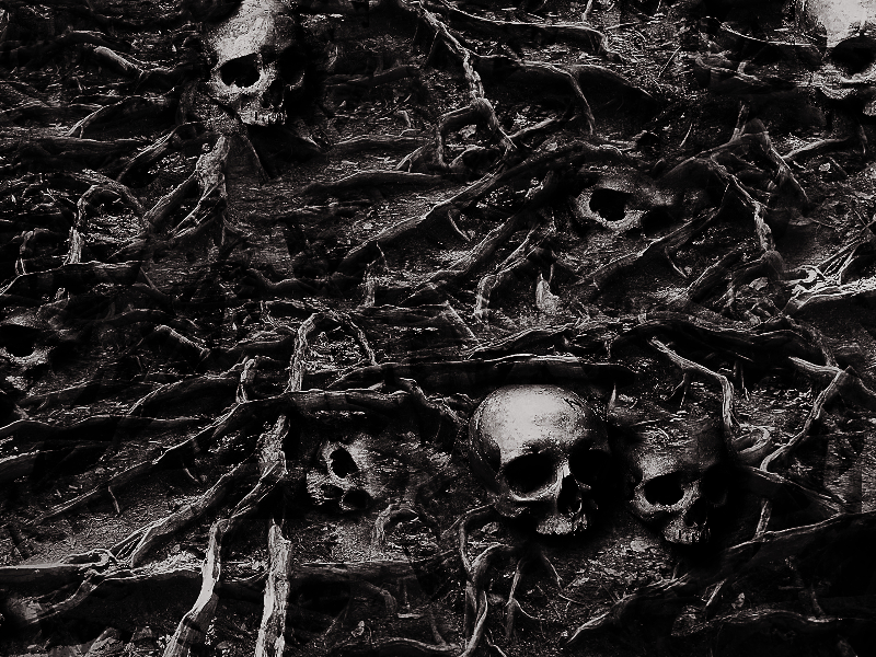 Horror Skull Background Texture Free