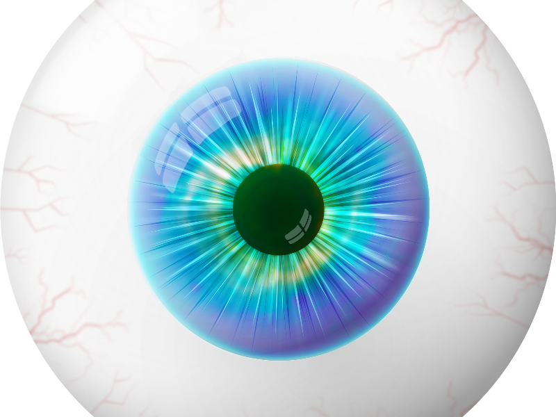 Human Cartoon Eye Image PNG