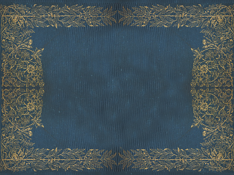 Old Book Cover Generator : Old book golden floral frame texture fabric textures