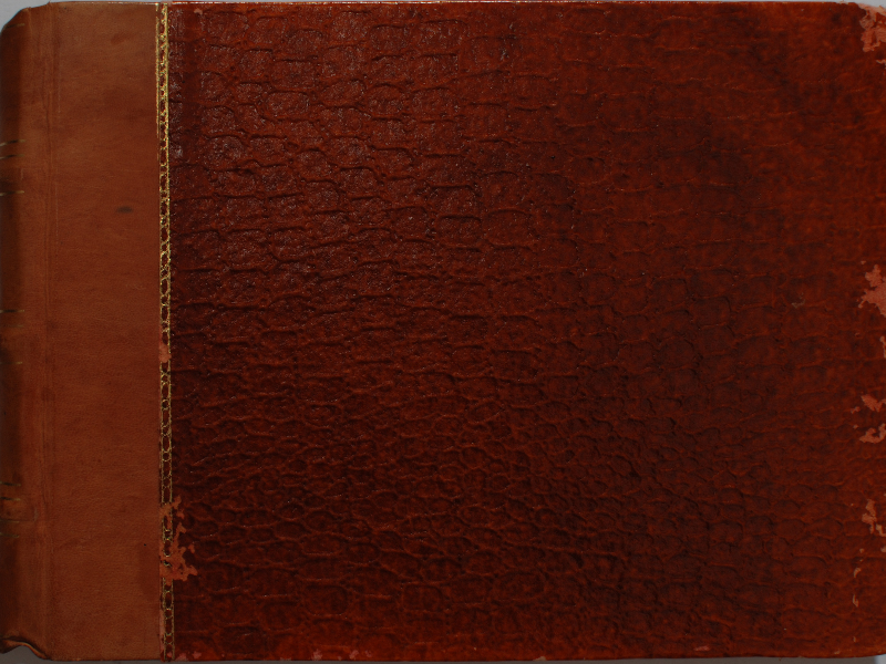 Old Snake Skin Book Cover Texture