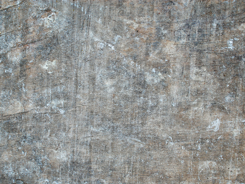 Old Weathered Rustic Wood Surface Texture Free