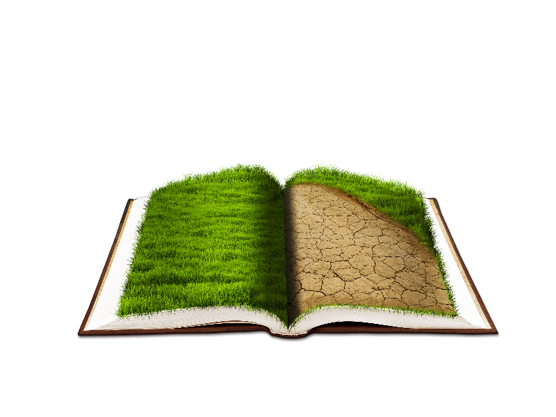 Open Book PNG with Grass Texture