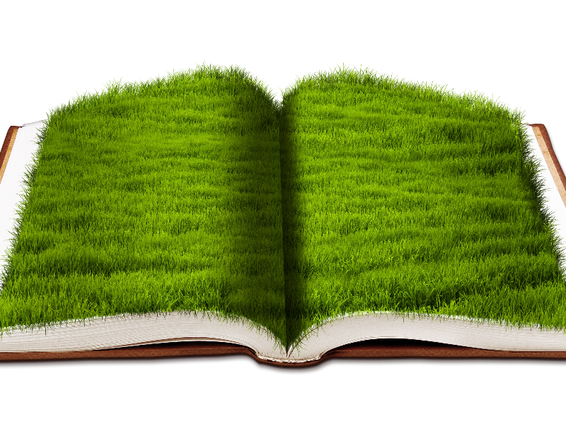 Open Book With Green Grass Png Background Image Free