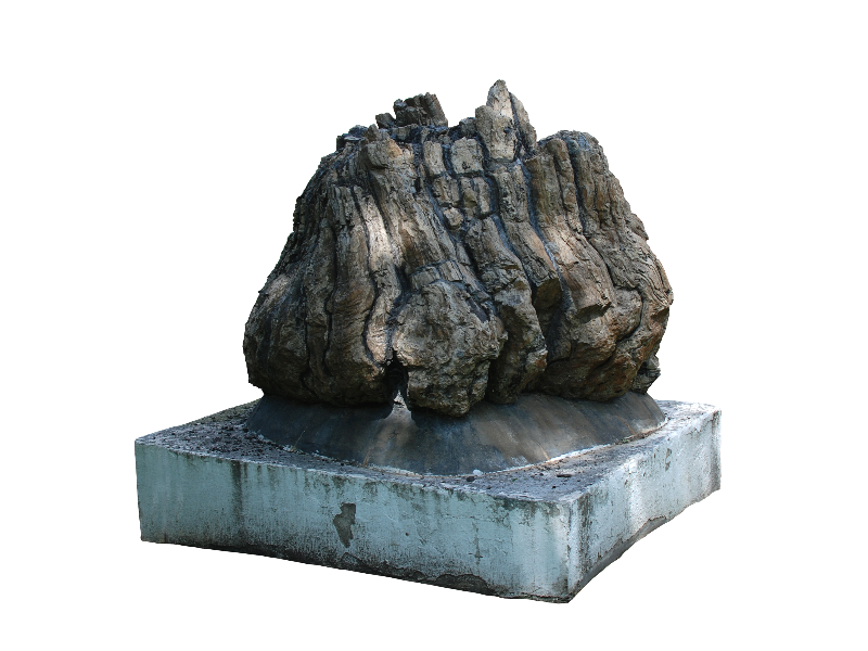 Petrified Rock Tree Trunk PNG