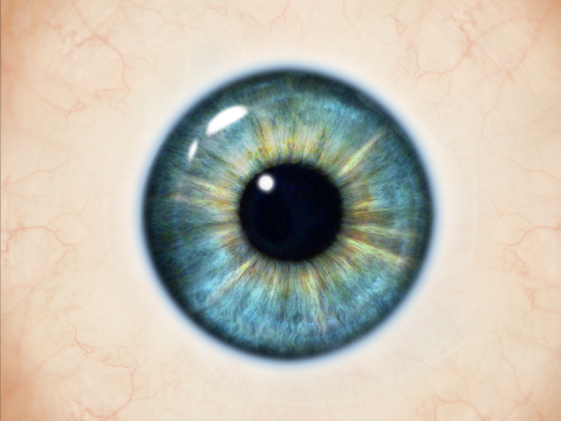 Realistic Human Eye Texture Free