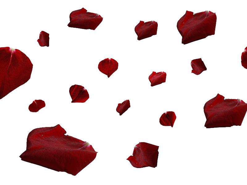 Red Rose Petals PNG