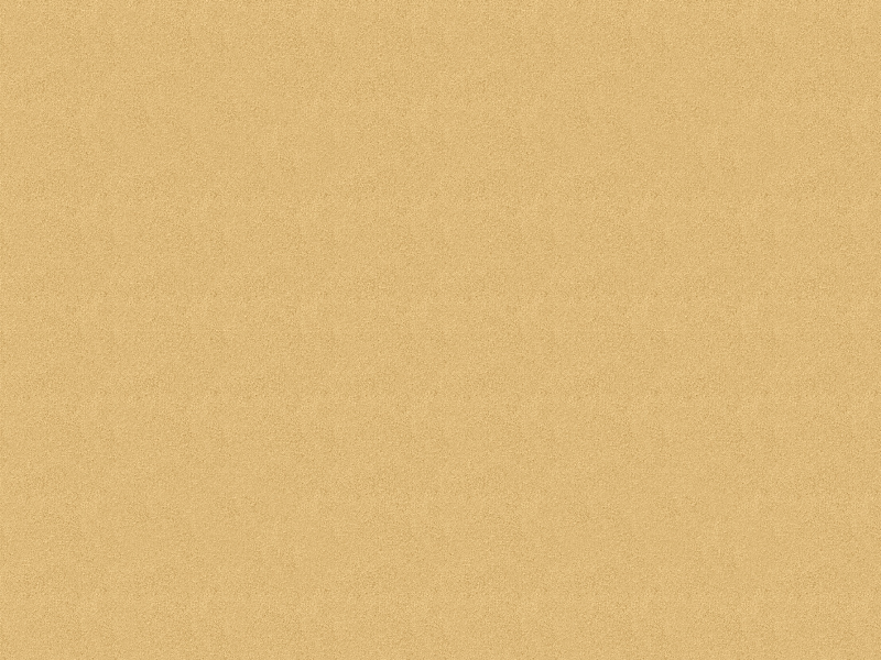 Seamless Golden Sand Beach Texture