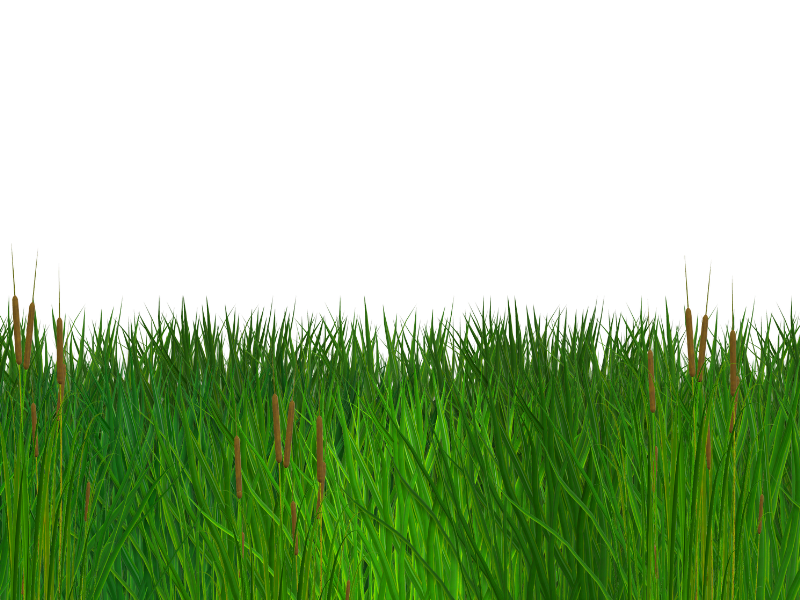 Seamless Grass Border Free PNG Clipart