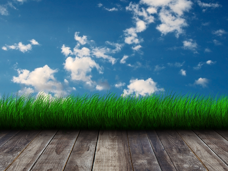 Sky Wall with Grass Border Room Background