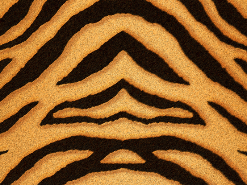 Tiger Print Fur and Skin Texture Free