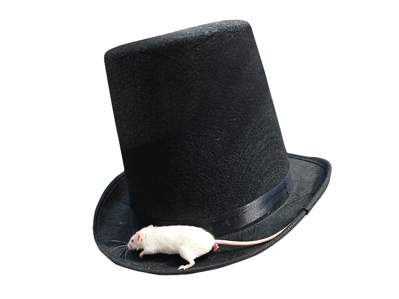 Magician Top Hat PNG With White Mouse