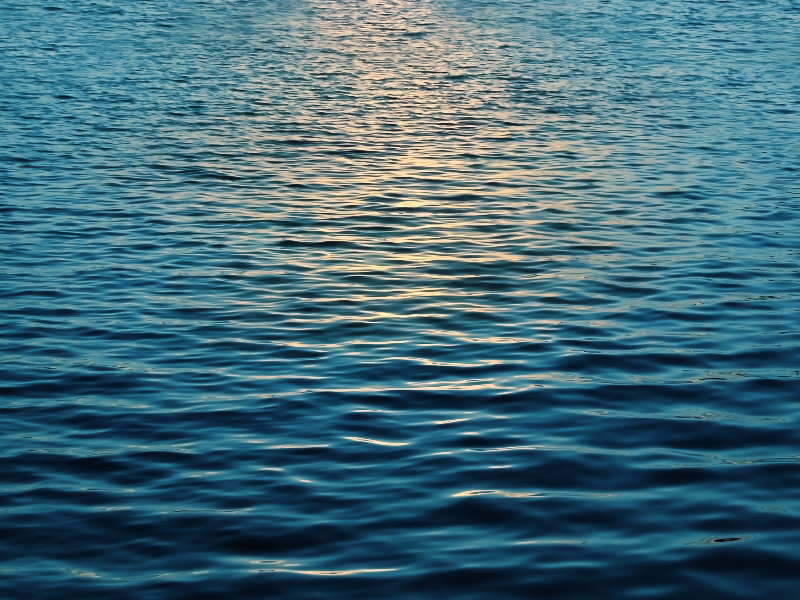 water surface with sun reflection texture free