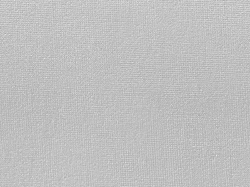 Seamless Canvas Fabric Texture
